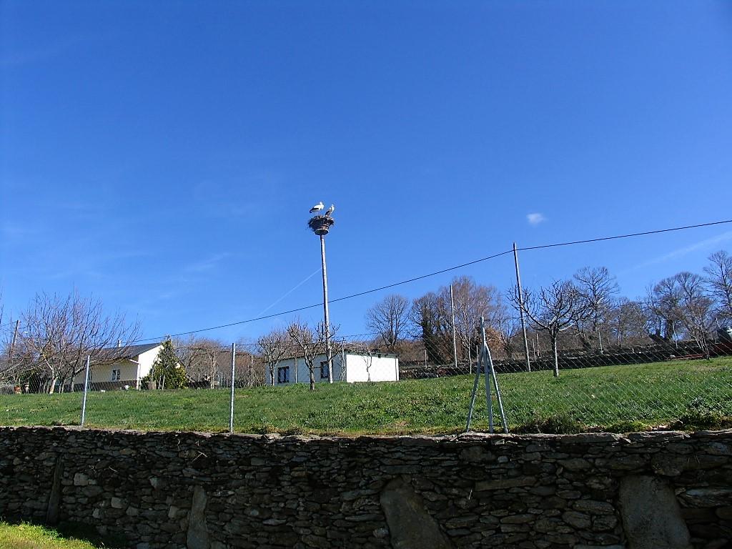 En Mourisca, Viana