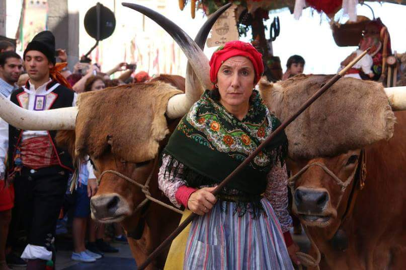 Ana Cristina, manejadora de bueyes