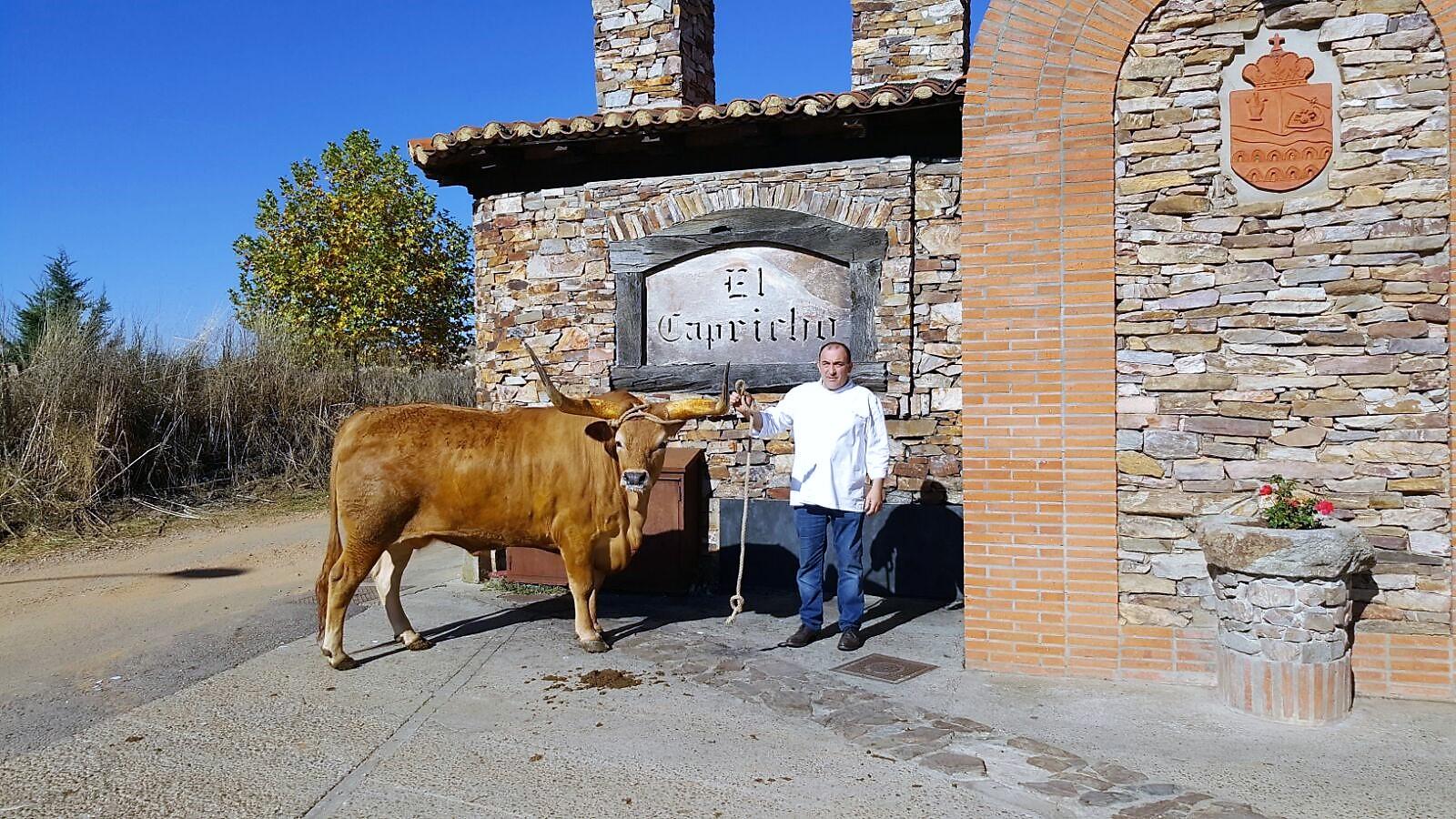 Nogueira suministra carne de buey a un restaurante considerado el mejor del mundo, El Capricho